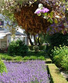 sfeerbeeld-tuin
